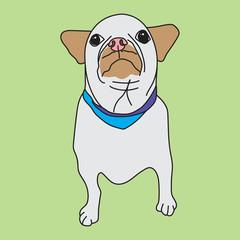 Puppy vector format