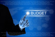 business hand clicking budget button on touch screen