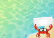 crab with sunglasses - 67438389