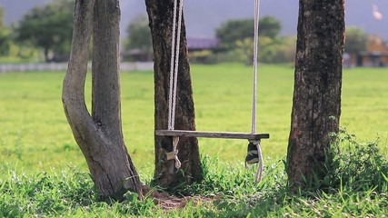 swing hanging from a tree in field