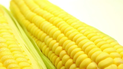 Fresh sweet corn background dolly shot