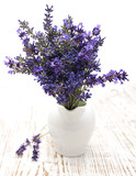 Lavender flowers in a white vase - 67439371