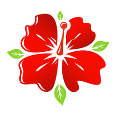 Vector red Flower