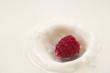 Raspberry splashes into milk