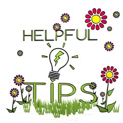 spring flower helpful tips