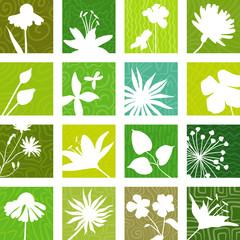 Botany icons
