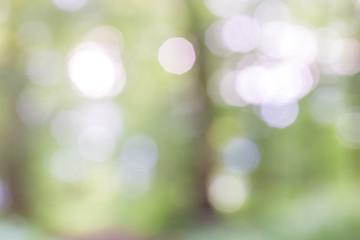 Background bohek of sparkling light