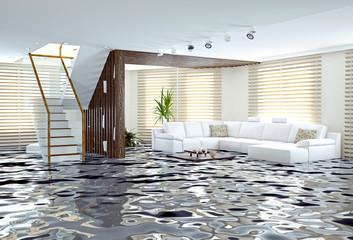 floodin. 3d concept