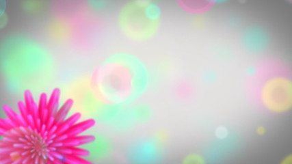 Flowers opening- colorful video background.