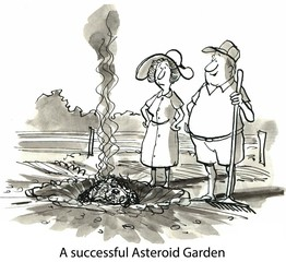 A successful Asteroid Garden