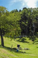 牧草刈り2