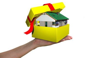 house in the package gift