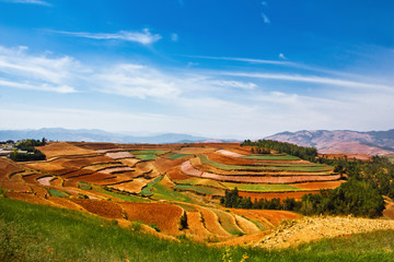 Yunnan Dongchuan Red land