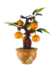 Orange tree model , home decoration