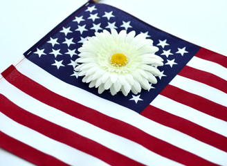 American flag and flower.