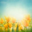 Spring Easter background