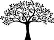 Tree silhouette - 67460996