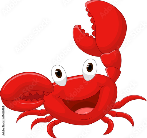 Cute crab cartoon - 67460984