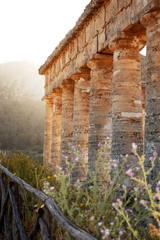 Tempio di Segesta # 2