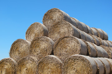 Hay pile under blue summer sky.