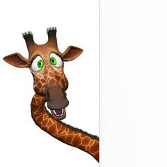 Giraffe with a blank board