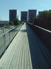 Elevated Boardwalk