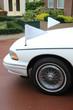 White hearse