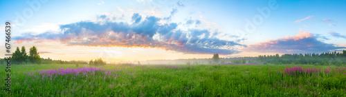 Fototapeta summer landscape with sunrise