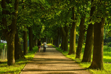 Niedzielny spacer po parku