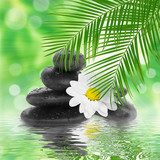 spa Background -  black stones and bamboo on water