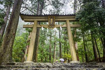 Kumano Sacred Trail in Wakayama, Japan