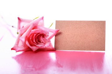 Pink rose with blank message card