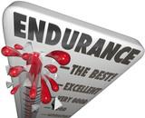 Endurance Measurement Highest Best Survival Skills Stamina Power poster