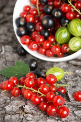 Fresh berries fruit background
