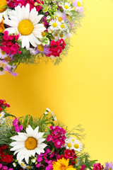 Beautiful bright flowers on yellow background