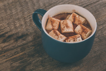 cup of cocoa with marshmellow and cinnamon