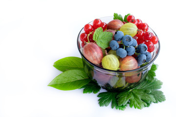 Bowl with blueberries, currants and gooseberries
