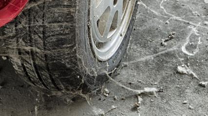 80's tire among cobwebs