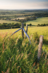 English countryside rural landscape in Summer sunset light