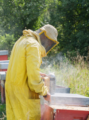 Bee keeper with smoke by hives. Honey production.