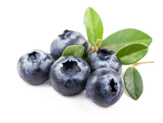 Mature bilberry