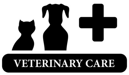 veterinary care isolated icon