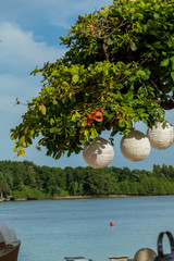 Three paper lanterns hanging form a tree