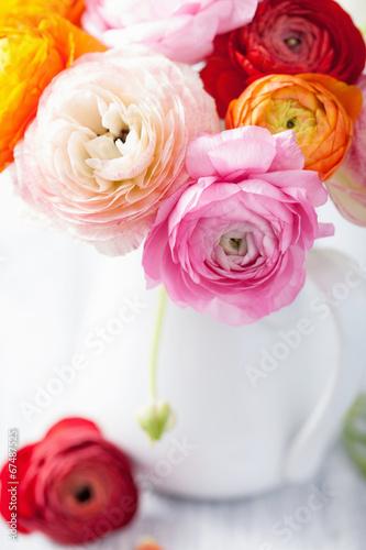beautiful ranunculus flowers in vase - 67487525
