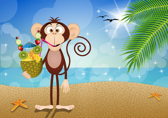Monkey with pineapple drink on the beach