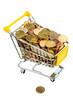 Münzen im Einkaufswagen