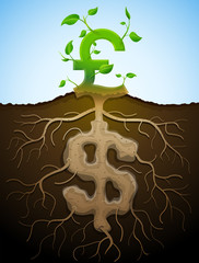 Growing pound sign like plant with leaves and dollar like root