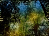 mysterious forest magic fantasy background poster