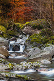 torrente alpino - 67492719