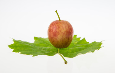 an apple and a leaf